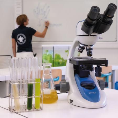 Travaux pratiques - Activités pédagogiques - Aquarium La Rochelle