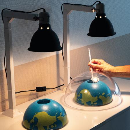 Atelier découverte - Activité pédagogique - Aquarium La Rochelle