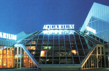 Histoire de famille - Aquarium des Minimes - Aquarium La Rochelle