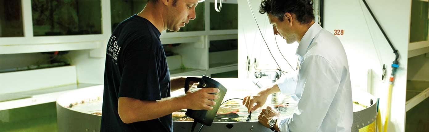 Missions pédagogiques - Reproduction - Aquarium La Rochelle
