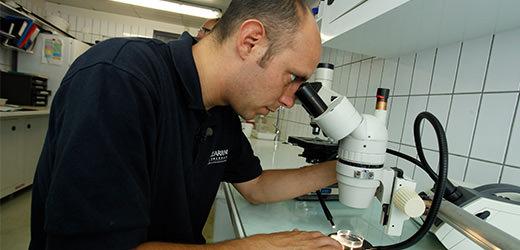 Recherche scientifique - Coulisses - Aquarium La Rochelle